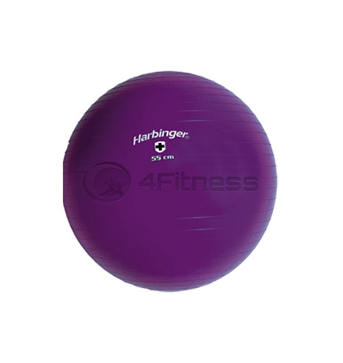 Швейцарска топка /диаметър 55 см/