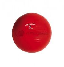 Швейцарска топка /диаметър 65 см/