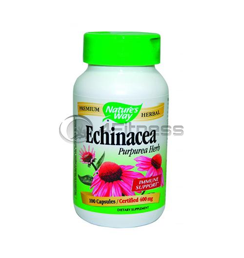 Echinacea Hebr 400 mg. / Ехинацея 400 мг. – 100 Капс.