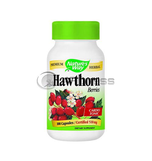 Hаwthorn Fruit 510 mg. / Глог (плод) 510 мг. – 100 Капс.