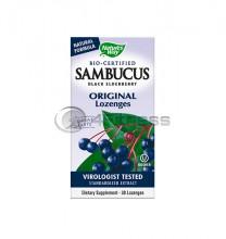 Самбукус