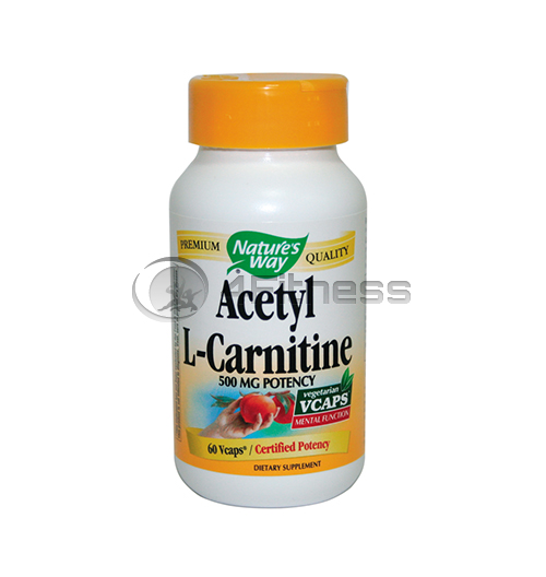 Acetyl L-Carnitine 500 mg./ Ацетил Л-карнитин 500 мг. – 60 Капс.