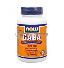 GABA + B-6 - 500 mg. / 100 Caps.
