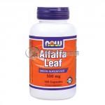 Alfalfa Leaf – 500 mg. / 100 Caps