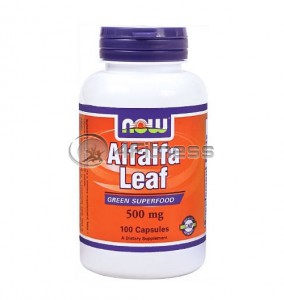 Alfalfa Leaf - 500 mg. / 100 Caps