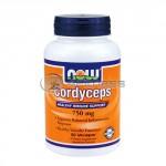 Cordyceps - 750 mg. / 90 VCaps.