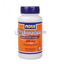 Echinacea - 400 mg. / 100 Caps.