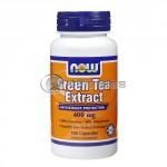 Green Tea Extract – 400 mg. / 100 Caps.