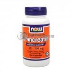 Pancreatin 4X – 500 mg. / 100 Caps.