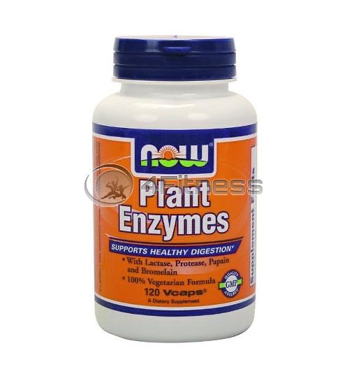 Plant Enzymes – 120 VCaps.