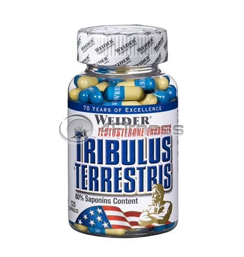 Tribulus Terrestris – 120 Caps.