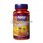 Tribulus Terrestris – 500 mg. / 100 Caps.