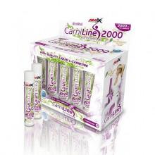 amix_carniline_pro_fitness_amp_box ED