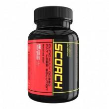Scorch V3 - 168 капс