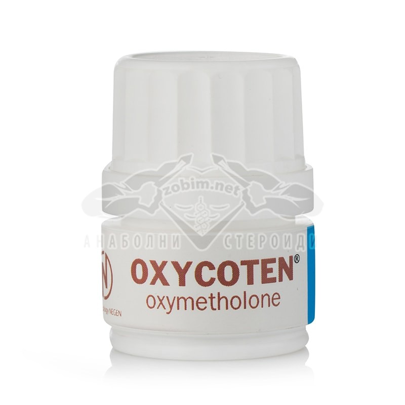 Oxycoten (Oxymetholone) – 50 табл. х 50 мг.