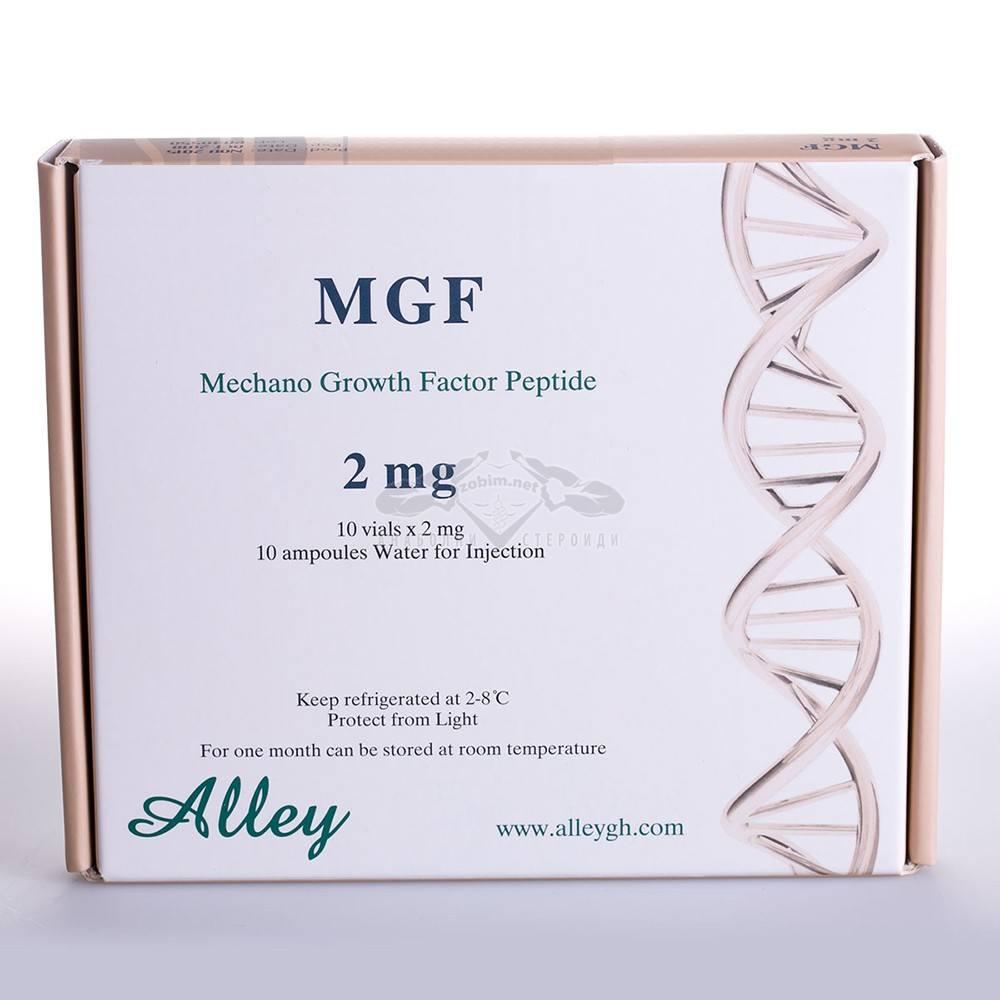 MGF-Mechano-Growth-Factor-Peptide