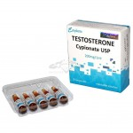 testosterone-cypionate_313429196