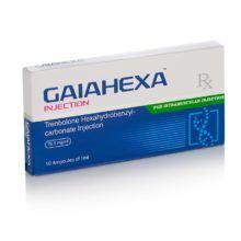 Gaiahexa