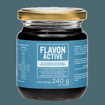 Flavon Active хранителна добавка за активни хора 240 гр.